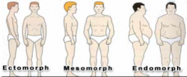 Knowing Your Body Type